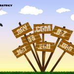 How To Develop A Multiple Domain SEO Strategy?