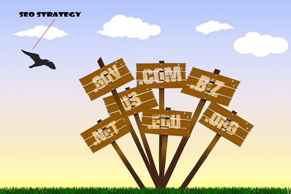 How to Develop a Multiple Domain SEO Strategy